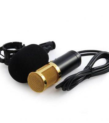 studio condenser microphone BM 800 2