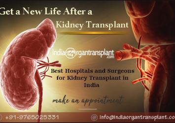 Timely Kidney Transplant can Save a Life 16