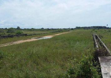 100 acres of farmland for sale in ijebu Igbo 11