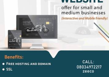 Businesses Website Design 1