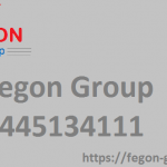 Fegon-Group | Get Internet Security | 8445134111 1
