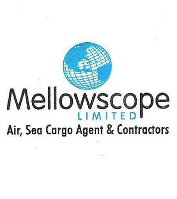 Custom Clearing and Forwarding Company in Lagos 1