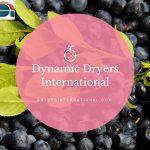 Fruit Dryer 2
