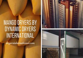 Mango Dryers 16