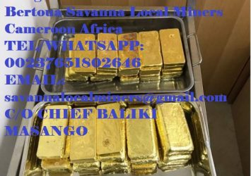Buy 100kg 99.98% AU Gold Bars from Cameroon, Buy 12.5kg Gold bar online 15