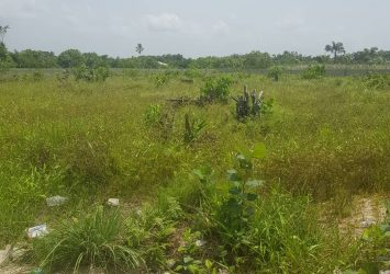 2000sqm of land for sale in banana island residential zone ikoyi Lagos Nigeria 2