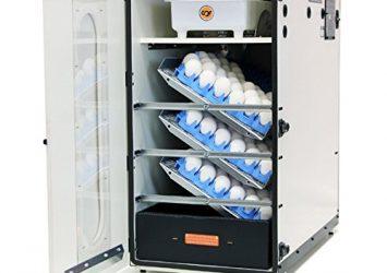 GQF 1502 Digital Sportsman Cabinet (Egg Incubator & Hatcher Combo) 16