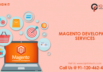 One of the best Magento Development Services 17